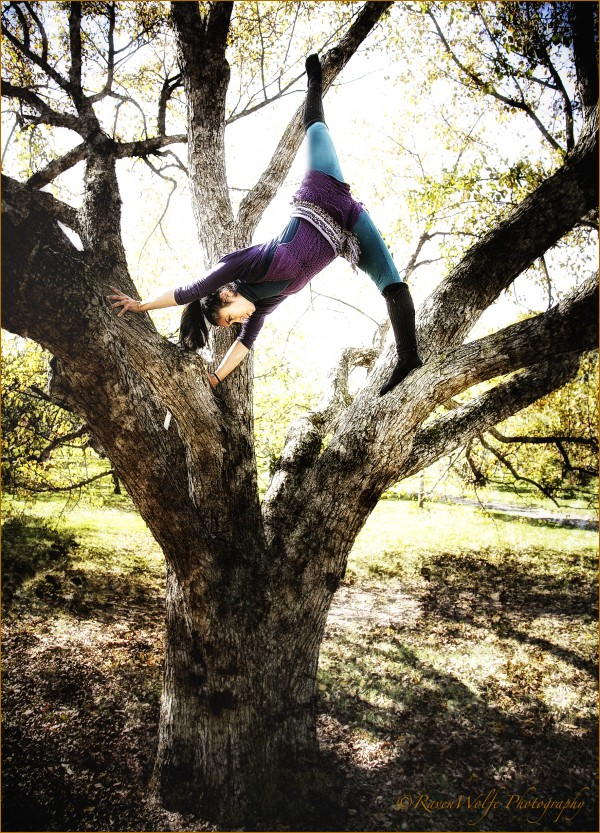 ANASMA YOGA TREE BY PETER MICHAELS PARADISE FOR RAVEN WOLFE PHOTOGRAPHY MONTREAL